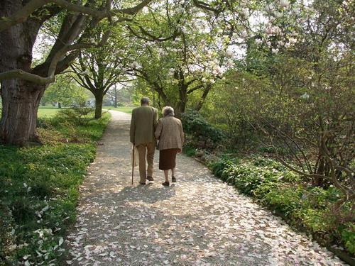 Частный пансион для престарелых и инвалидов «Старость в радость»